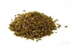 Солод Ржаной неферментированный Rye malt (not ferm) EBC 2 (Курский солод)